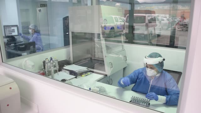 researcher works on samples of plasma donated by patients who recovered from covid-19 on august 14, 2020 in bogota, colombia. a group of researchers... - medical research stock videos & royalty-free footage