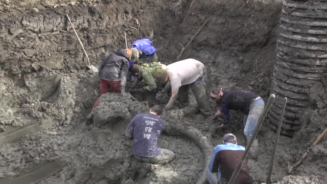 vidéos et rushes de researchers from the university of michigan remove mud from around the skull of a mammoth skeleton / the bones were discovered by a chelsea, michigan... - archéologie