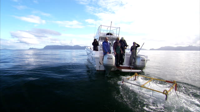 researchers launch diving cage from the back of boat. - nautical vessel stock videos & royalty-free footage