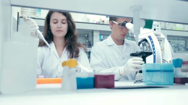 researchers looking into a microscope in laboratory, concept science - scienziata video stock e b–roll