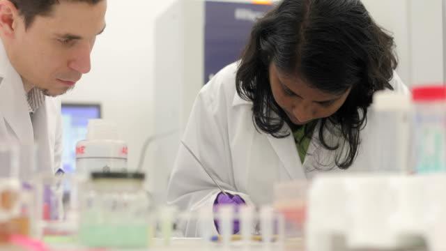 Researchers Preparing and Examining Scientific Sample