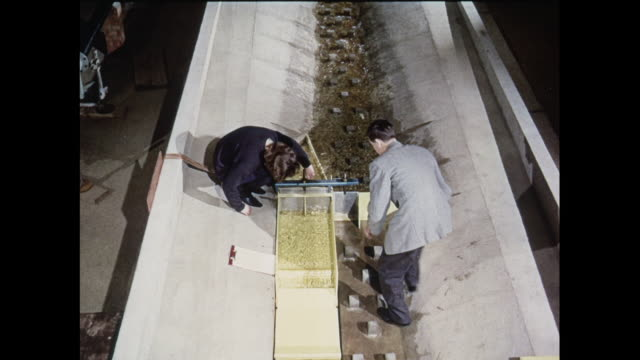 montage researchers study models of hydroelectric power stations in united kingdom - small stock videos & royalty-free footage