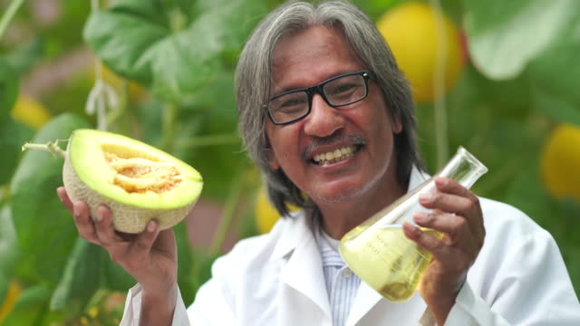 researchers tested sweetness of the melon crop varieties for research and development , gmo food , biofood concept - tasting stock videos & royalty-free footage