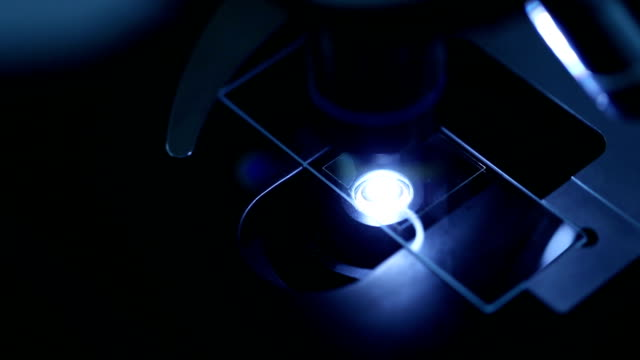 Researchers Using a microscope in laboratory, slow motion