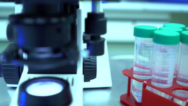 forscher unter dem mikroskop im labor, slow-motion - biochemiker stock-videos und b-roll-filmmaterial