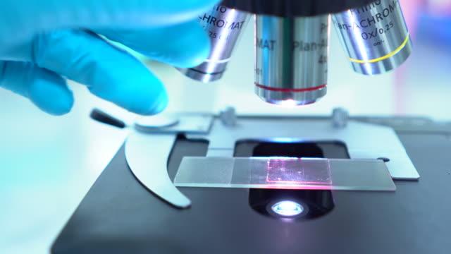 顕微鏡を使用する研究で、安全性 - 拡大イメージ点の映像素材/bロール