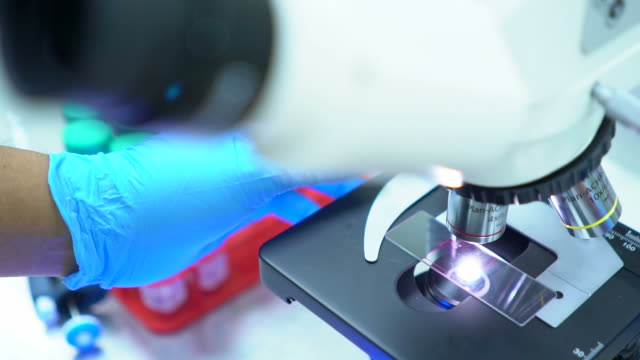 researchers using a microscope in laboratory - nanotechnology stock videos & royalty-free footage