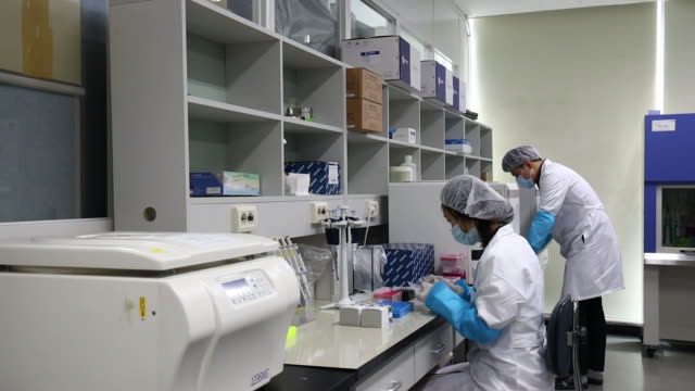 researchers work on production line manufacturing genefinder covid19 plus realamp testing kit at the osang healthcareco headquarters in anyang south... - südkorea stock-videos und b-roll-filmmaterial