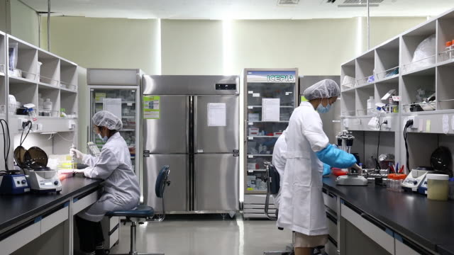 researchers work on production line manufacturing genefinder covid-19 plus realamp testing kit at the osang healthcareco. headquarters in anyang,... - プラスキー点の映像素材/bロール