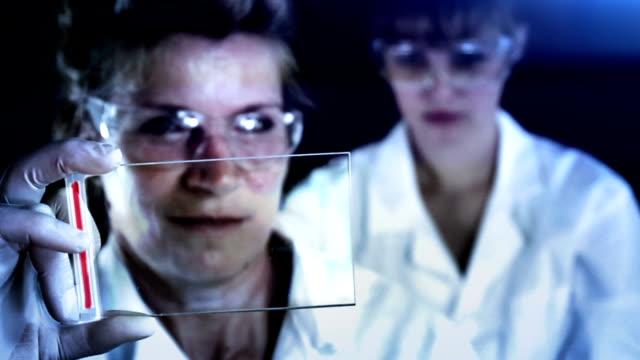 vídeos de stock, filmes e b-roll de pesquisadores trabalhando em laboratório. - bolha de replicação