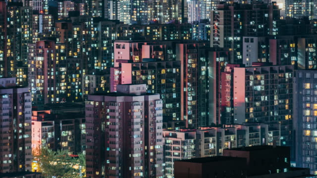 t/l zo residential building windows twinkle at night / beijing, china - pechino video stock e b–roll