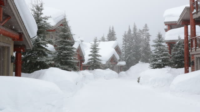 residential street during winter snowstorm - capanna di legno video stock e b–roll