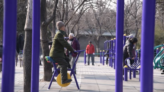 stockvideo's en b-roll-footage met residents of beijing perform traditional chinese exercises in tiantan park in beijing shot on january 28th 2015 - actieve ouderen