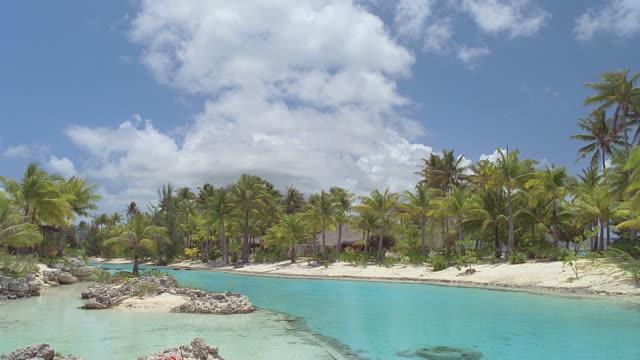 vídeos de stock e filmes b-roll de ws resort island with palm trees and lagoon / bora bora, tahiti  - territórios ultramarinos franceses