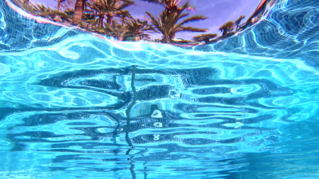 Resort swimming pool point of view of the tropical climate in 4K