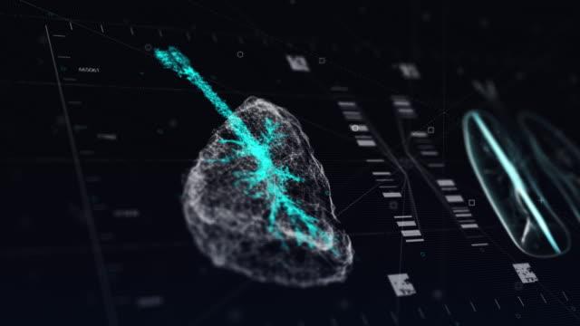 vidéos et rushes de analyse technologique de l'irm du système respiratoire - poumon humain