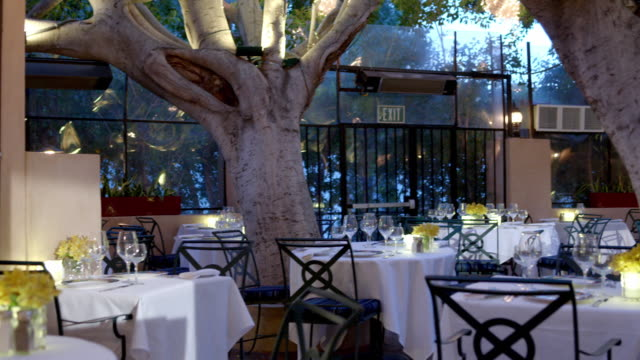 TD restaurant garden patio with clusters of soft beehive lights hanging from fully grown lupe ficus trees with dining tables set for opening time