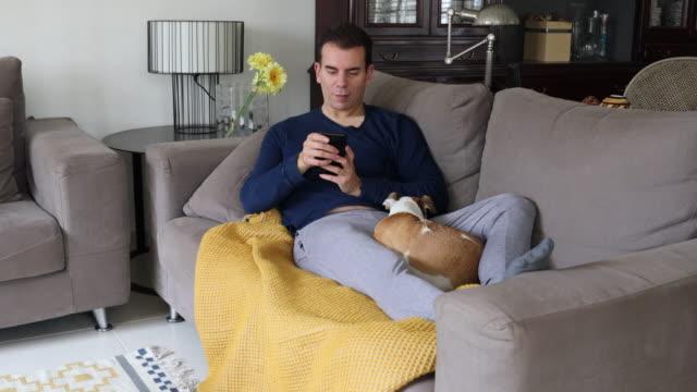 vídeos y material grabado en eventos de stock de resting at home petting the dog in the sofa using mobile phone during covid-19 quarantine. - 35 39 años