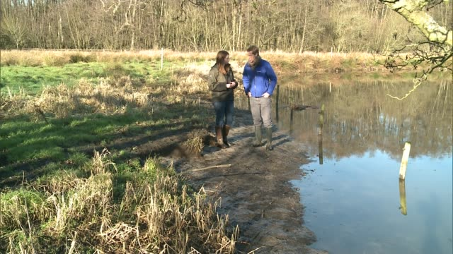 resurgence in number of otters in surrey itn reporter and alex learmont along by water and looking at tracks on ground sot learmont and reporter... - otter stock videos & royalty-free footage