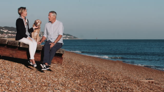 Retired Senior Couple sitting on jetty on beach with dogs