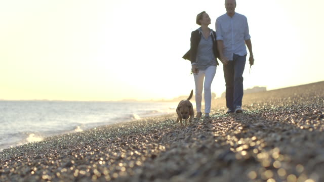 Retired Senior Couple walking on beach with dogs