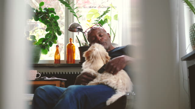 Retired senior man grooming lap dog while sitting on chair at home