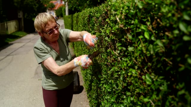 retired senior woman gardening - pruning stock videos & royalty-free footage