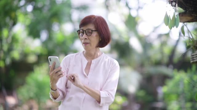 retired woman using smart phone for taking picture - bench stock videos & royalty-free footage