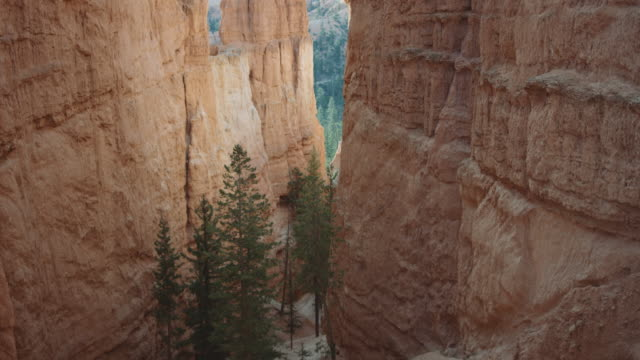 4k uhd: reveal of bryce canyon hikers - canyon stock videos and b-roll footage