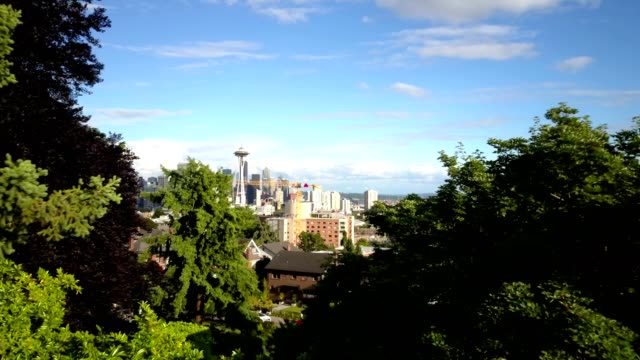 reveal of seattle skyline through trees - seattle stock-videos und b-roll-filmmaterial