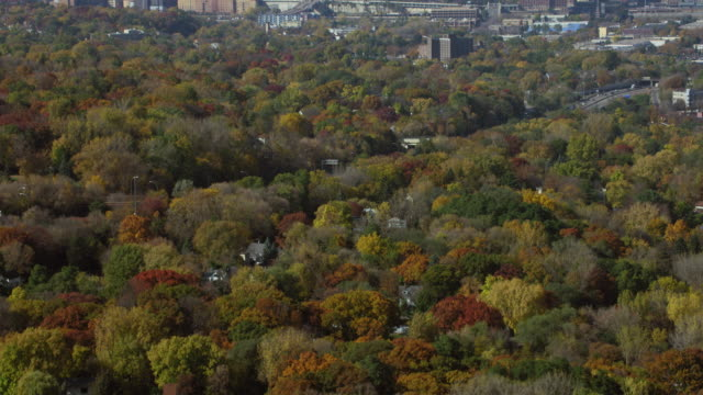 Revealing Downtown Saint Paul In Autumn