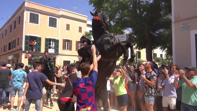 revellers celebrate the sant joan festival on the spanish island of minorca cheering on as pure bred minorcan horses are paraded through the city... - minorca stock videos & royalty-free footage