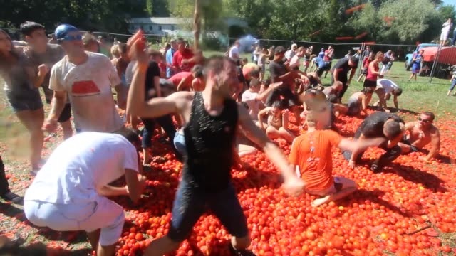 revellers take part in a tomato battle during the tomatina festival in kiev, ukraine on august 27, 2016. kiev hosts the first tomatina festival... - tomato stock videos & royalty-free footage