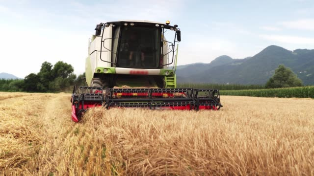 revolving reel of a combine head - hay field stock videos & royalty-free footage