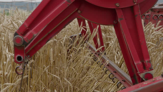 revolving reel of a combine head - combine harvester stock videos & royalty-free footage