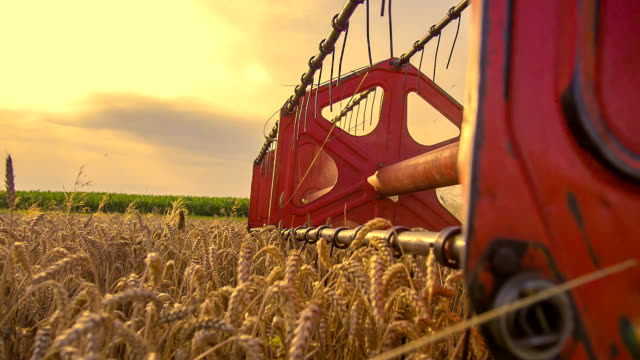 stockvideo's en b-roll-footage met slo mo revolving reel of a combine head - oogsten
