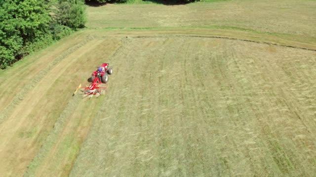 drehrolle auf einem traktor, der ein feld erntet - cereal plant stock-videos und b-roll-filmmaterial