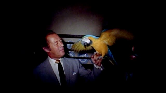 "rex harrison ""dr. dolittle"" 1967 -- behind the scenes. rex harrison with animal actors from the movie dr. dolittle. pink elephant, parrot, monkey,... - film set stock videos & royalty-free footage"