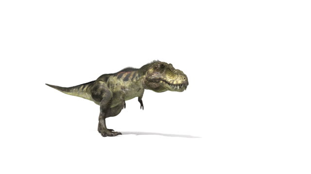T. rex walking and roaring