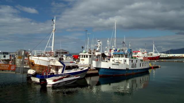 reykjavik fishing boats - whaling stock videos & royalty-free footage