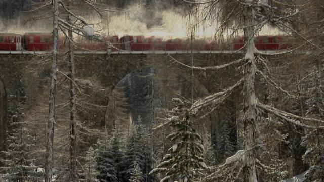 rhb train on the world heritage albula railway - 蒸気機関車点の映像素材/bロール