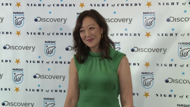rhea suh at the natural resources defense council presents night of comedy benefit hosted by seth meyers at new york historical society on april 30... - seth meyers stock videos and b-roll footage