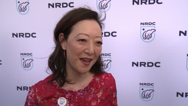 interview rhea suh on the threats the trump administration poses to our environment at nrdc stand up for the planet la 2017 in los angeles ca - national resources defense council stock videos & royalty-free footage