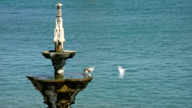 rhodes greece fountain with doves - rhodes dodecanese islands stock videos & royalty-free footage