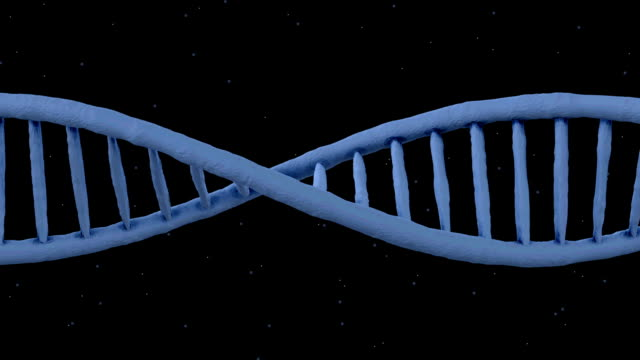 dna ribbon animation - loop - chromosome stock videos and b-roll footage