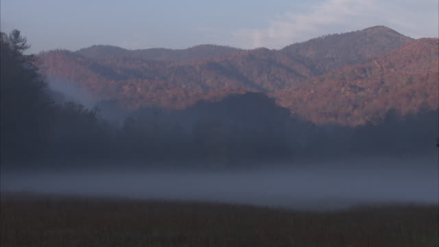 a ribbon of fog settles over an appalachian valley. - appalachia stock videos & royalty-free footage