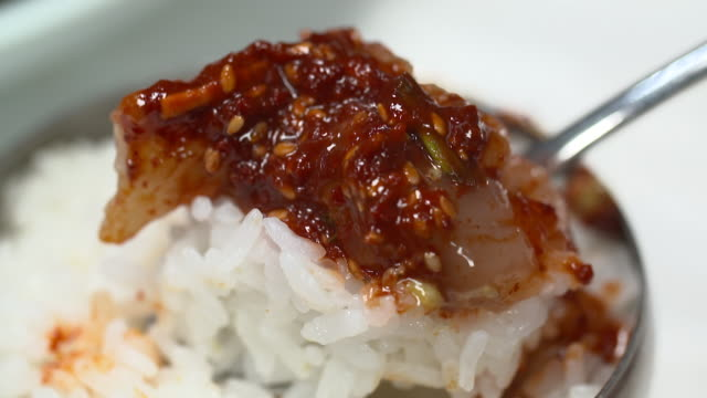 rice and yangnyeom gejang(seasoned marinated raw crab) being spooned up - marinated stock videos and b-roll footage