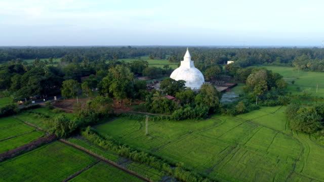 stockvideo's en b-roll-footage met rijst veld en boeddhistische tempel - sri lankaanse cultuur