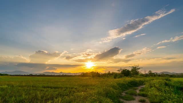 vídeos y material grabado en eventos de stock de campo de arroz y lapso de tiempo 4k del amanecer - televisión de ultra alta definición