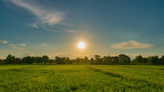 vídeos de stock e filmes b-roll de rice field and sunset in chiang mai, thailand : 4k time lapse. - campo